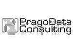 PragoData Consulting, s.r.o.